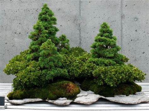 le bonkei  paysage en miniature