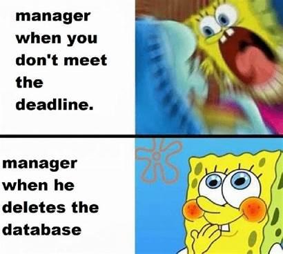 Memes Manager Savage Employee Relationship Capture Spongebob