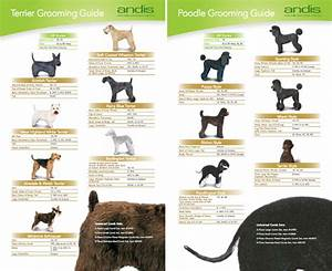 Andis dog grooming clippers and accessories dog milk for Andis dog clipper blade guide