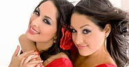 les catcheuses !!: the bella twins