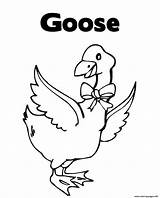Goose Coloring Pages Printable Animal Henny Penny Loosey Goosey Info sketch template