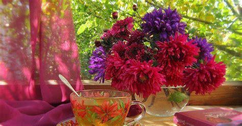 ciganos encantados wladimir e rosa madalena bom dia