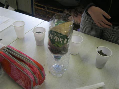 water filtration experiment     class holmpatrick national school