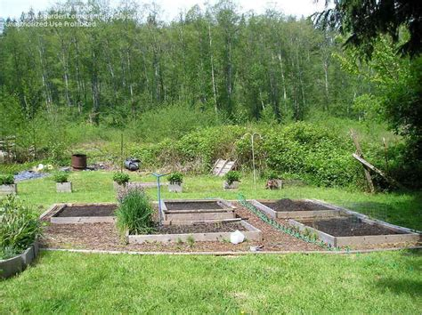 pacific northwest landscaping ideas pacific northwest gardening landscaping ideas please 1 by tillysrat