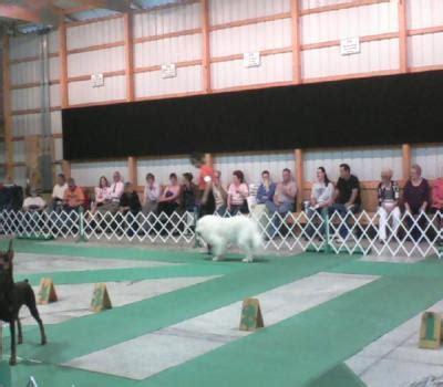 champaign illinois kennel club breed akc member club located
