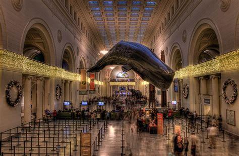 field museum of history flickr