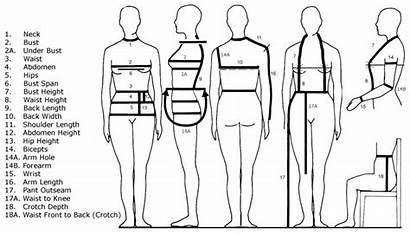 Measurements Chart Sewing Take Measurement Measure Clothing