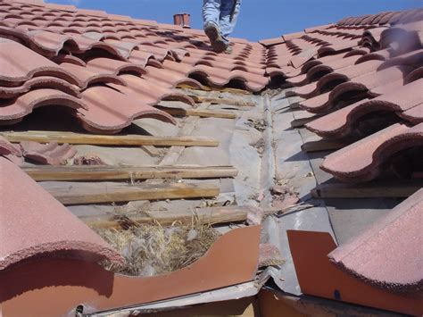 preventing common tile roof mistakes 187 pie consulting