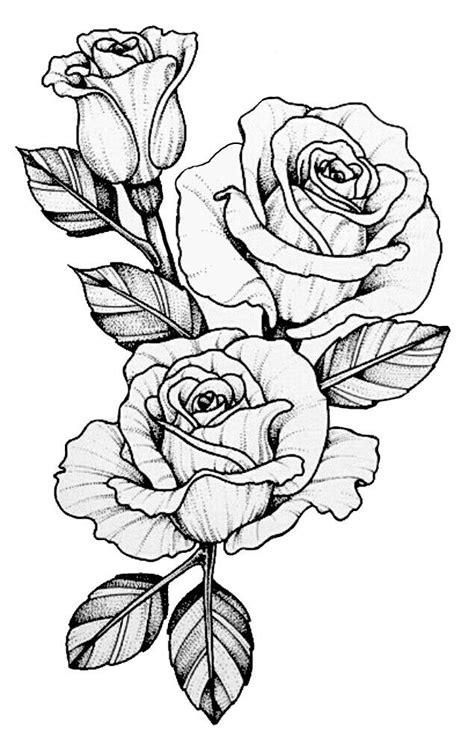 Pin by Miguelita Moore on Rose drawings in 2019 | Tattoo design drawings, Flower tattoo designs