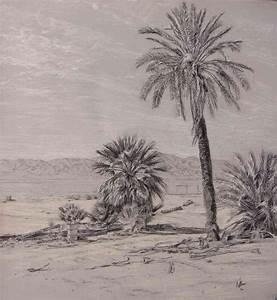 Landscape Drawing Beach randicecchine
