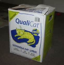 costco cat litter costco qualicat cat litter product review living well