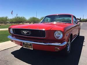 "1966 Mustang Fastback ""Hi Performance"" - Alpio's At Troon"