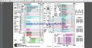 Cummins Qsm11 Wiring Diagram Manual