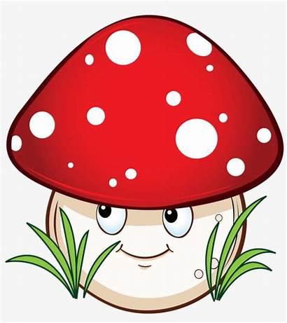 Mushroom Cartoon Drawing Mushrooms Clipart Drawings Easy