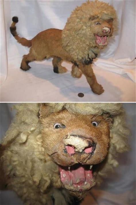 taxidermy fails   nightmares     pics