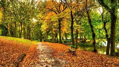 Park Central York Autumn Desktop Sfondi Pantalla