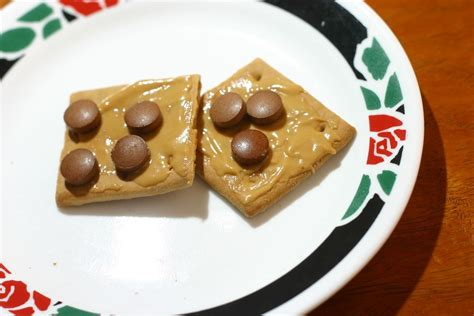 How To Make Healthy Graham Cracker Peanut Butter Snack