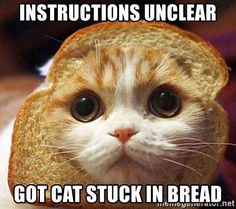 Cat In Bread Meme - instructions unclear got cat stuck in bread inbread cat meme generator