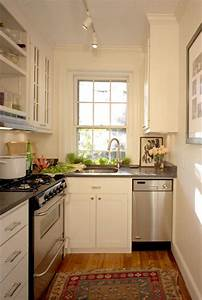 Inspiring Pictures Of Very Small Kitchen Design