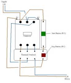 weg electric motor wiring diagram weg auto wiring diagram database similiar weg motor capacitor wiring keywords on weg electric motor wiring diagram