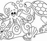 Seashell Getcolorings sketch template