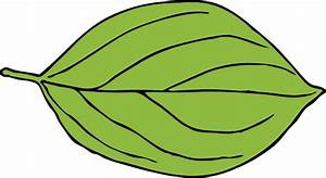 Apple Leaf Clip Art at Clker.com - vector clip art online ...