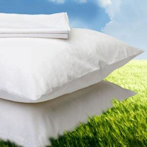 cuscini naturali cuscini naturali la casa econaturale