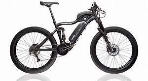 Ebike Mountain Bike : interceptor e bike lenz sport ~ Jslefanu.com Haus und Dekorationen
