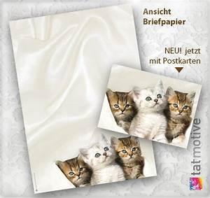 Acheter Papier Bulle : acheter papier ~ Edinachiropracticcenter.com Idées de Décoration