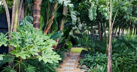 tropical garden   heart  melbourne australian