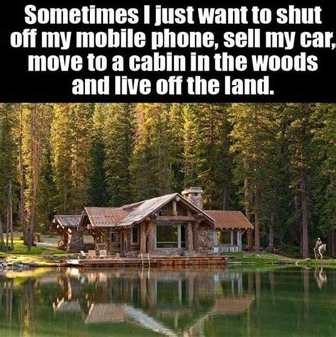 Cabin Woods Quotes
