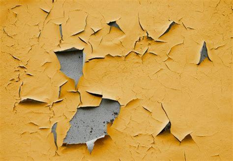 Peeling Paint  Why It Happens And How To Fix It  Bob Vila