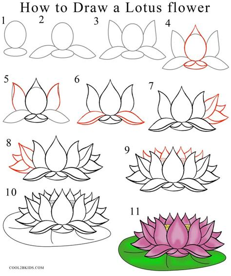 how to draw a flower step by step how to draw lotus flower step by step pictures cool2bkids