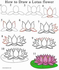 How to Draw Lotus Flower Step by Step | How to draw ...