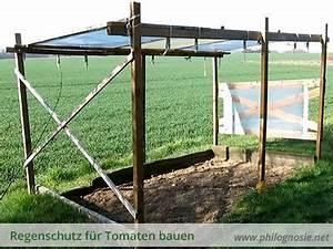 Tomaten Regenschutz Selber Bauen : tomatendach regenschutz f r tomaten bauen tomaten ziehen anbauen tomaten dach tomaten ~ Frokenaadalensverden.com Haus und Dekorationen