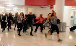 LAX terminal evacuated following shots fired at airport ...