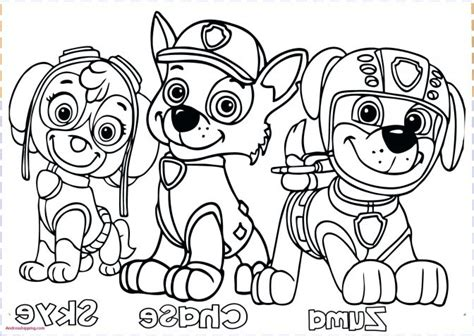 Coloring : 59 Splendi Kids Pages Paw Patrol Free For Boys