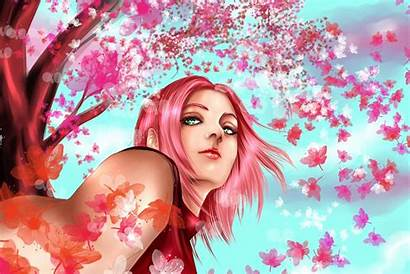 Sakura Naruto Anime Haruno Wallpapers Background Desktop