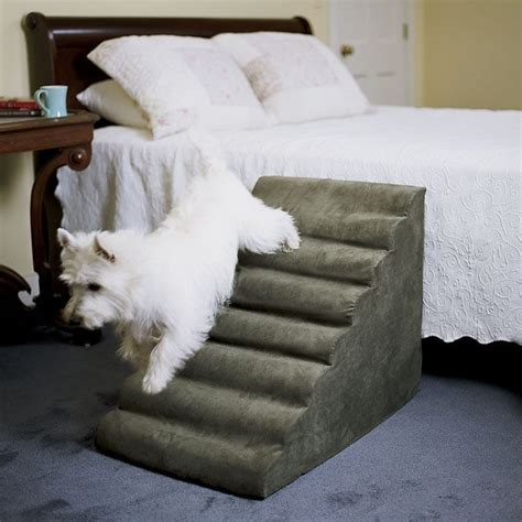 pet stairs for beds 398 best images about westie thoughts stuff on