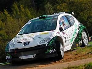 Top Annonce 69 : 207 f2000 14 maxi rallye c te rallycross autocross pi ces et voitures de course vendre ~ Medecine-chirurgie-esthetiques.com Avis de Voitures