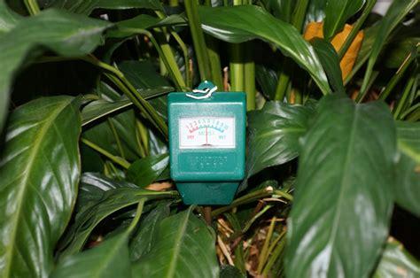 automatische bewässerung zimmerpflanzen feuchtigkeitsmesser pflanzen selber bauen automatische