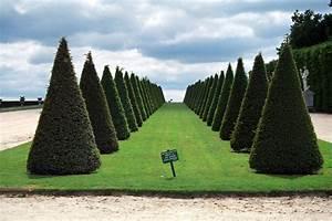 the time of elegance jardin a la francaise an interior With exceptional jardin a la francaise photo 4 jardin design