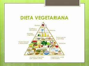 Dieta Vegetariana → Adelgazar y bajar de peso saludablemente Dietas