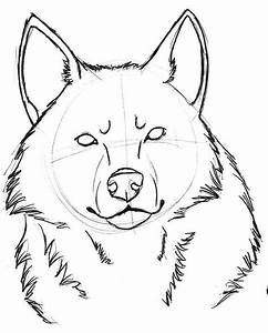 Wolf Head Sketch 1 by sparkpaw on DeviantArt
