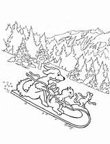 Animals Coloring Sled Snow Sledding Sleigh Adron Mr Kid sketch template