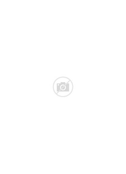 Sight Word Number Snowman Printable Addition Math
