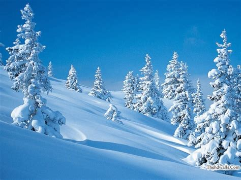 Cool Winter Background by Cool Winter Wallpaper Wallpapersafari
