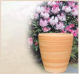 Blumentöpfe Groß Draußen : blumentopf mit untersetzer ~ Eleganceandgraceweddings.com Haus und Dekorationen