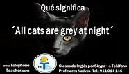 All Cats Are Grey At Night….   Gatos, Noche y Profesores