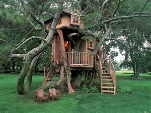 Ideas : Style Cool Tree Houses Design Unique Cool Tree ...